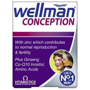 wellman cons.jpg